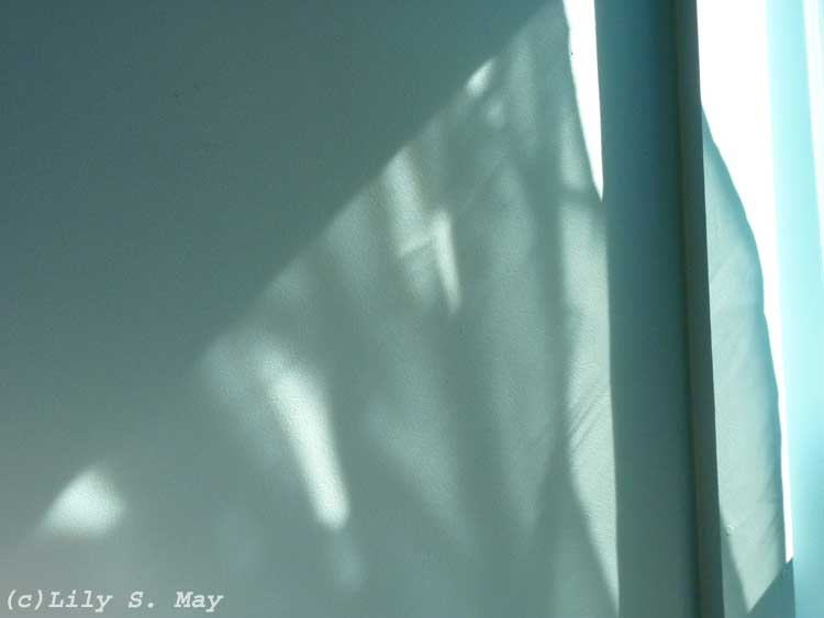 Shadow of a curtain