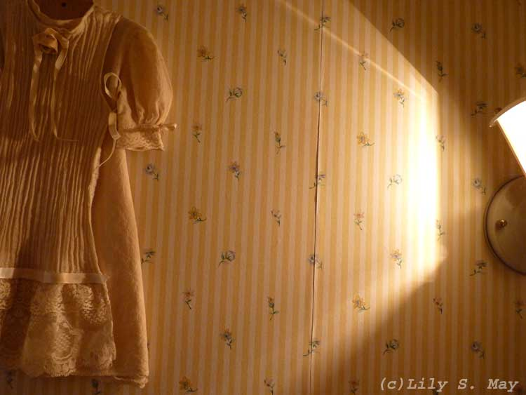 Light and lace photo