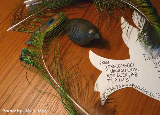 Mail Art from Winged Heart