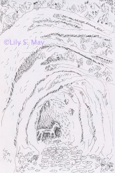 Among the Falling Leaves: Drawing ©Lily S. May, 2014